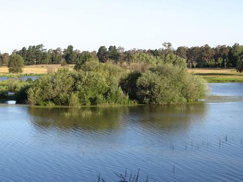 naturaleza-australia.jpg